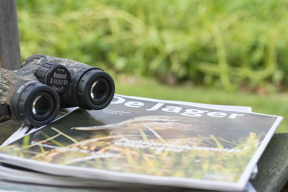 双眼鏡は野鳥観察の必需品